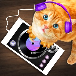 DJ Cat Real Simulator