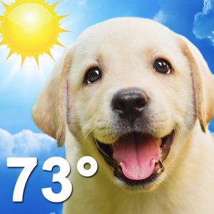 Weather Puppy Weather app