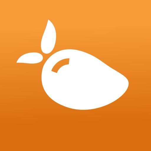 Mango Voice Mobile