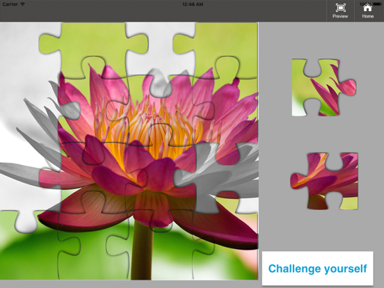 All Jigsaw Puzzles screenshot 5
