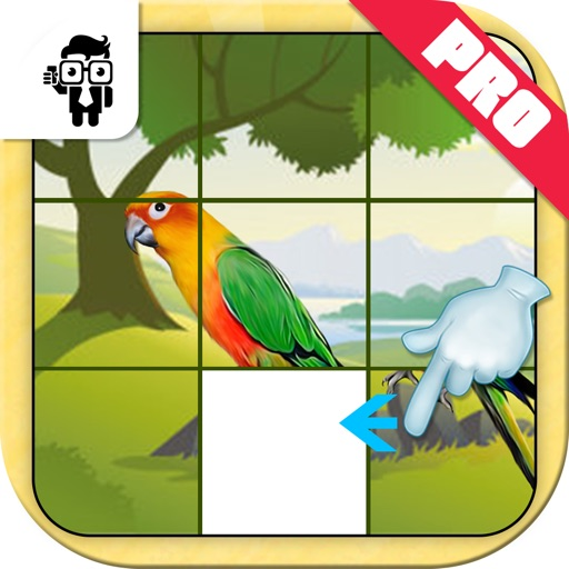 Bird Slide Puzzle Kids Game Pro
