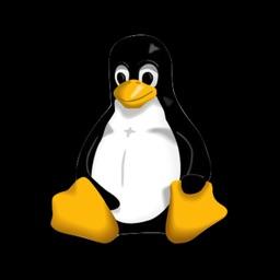 Practical UNIX Linux for iPad