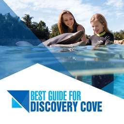 Best Guide for Discovery Cove