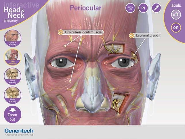 3D Facial Anatomy Tool 17+