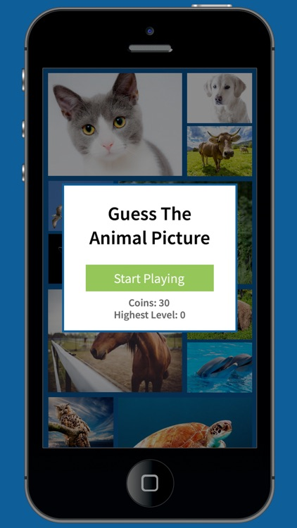 Guess the Animal Picture