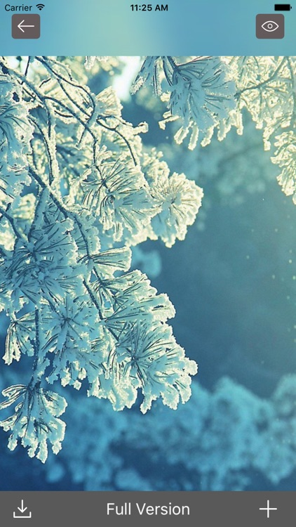 SnowFall - Cool HD WallpaperS,Backgrounds & Themes