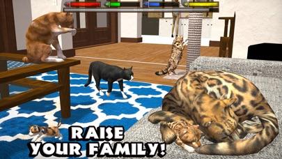 Ultimate Cat Simulator App Reviews - User Reviews of