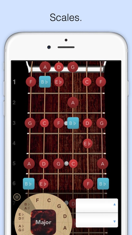 ChordBank  -  Guitar Chord App screenshot-3