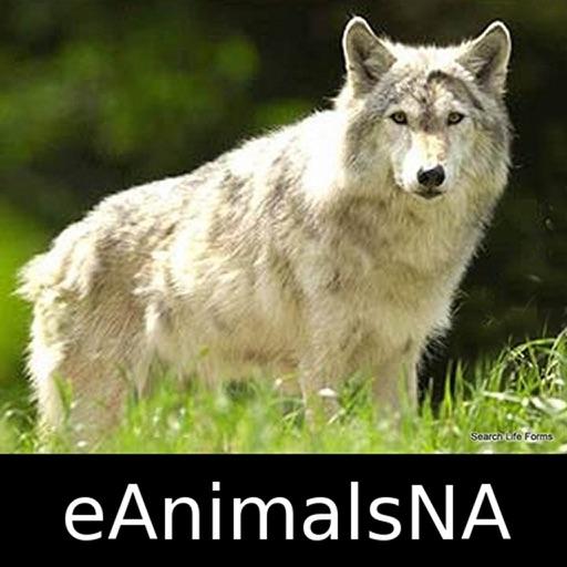 Animals of North America - eAnimalsNA - Animal App