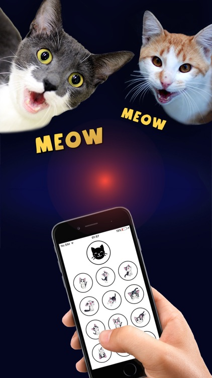 Cat Translator - Human to Cat communicator