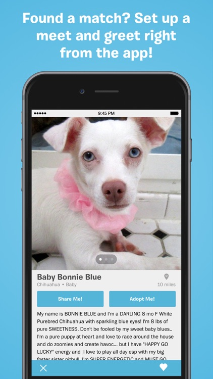 BarkBuddy screenshot-1