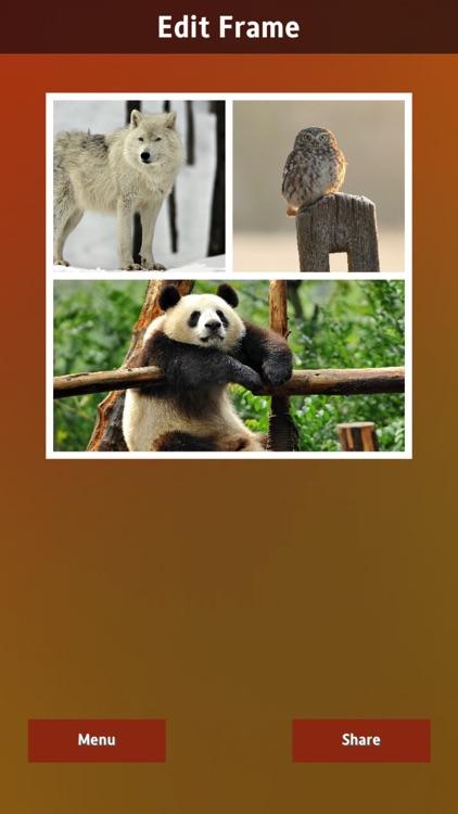 InstaFrames++ screenshot-3