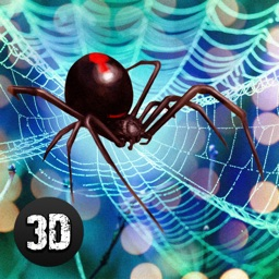 Black Widow Insect Spider Life Simulator