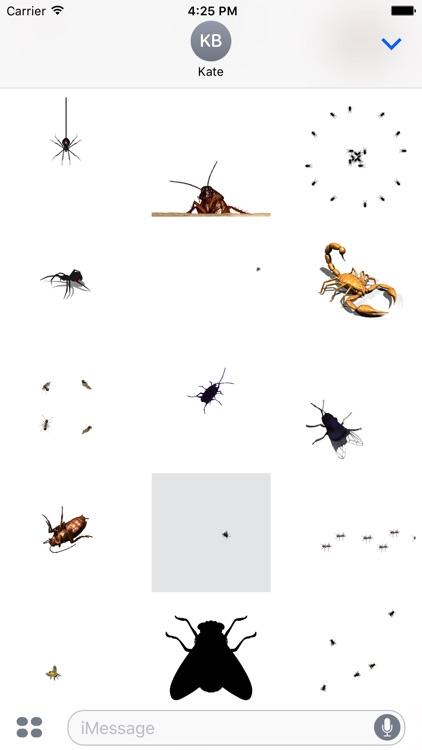 Animated Bugs