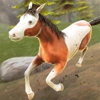 Codes for My Riding Wild Horse: The Jumping Adventure Hack