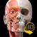 근육 | 골격 - 3D 해부도