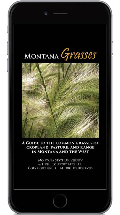 Montana Grasses screenshot-0