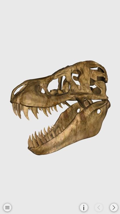 World of Dinosaur : The Ultimate Dinosaur Resource screenshot-4