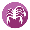 Scorpio Horoscope - Daily Zodiac, Astrology, Love