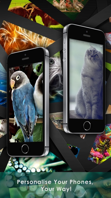 Cool Animals HD Awesome Themes & Wallpapers