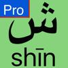 Alphabet arabe - Pro