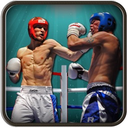 3D Boxing Punch Pro: Ultimate Iron Fist