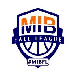 Metro Indy Basketball