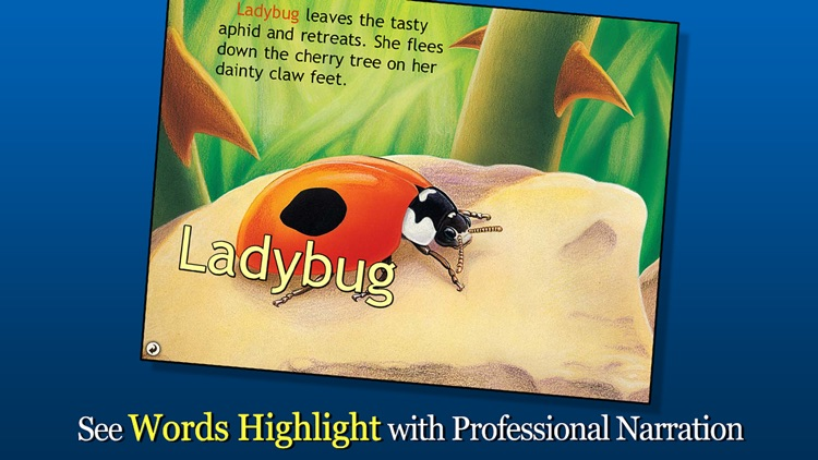 Ladybug at Orchard Avenue - Smithsonian's Backyard