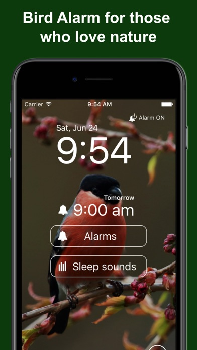 Bird Alarm Clock & Sleep Sound