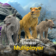 Activities of Lioness Multiplayer