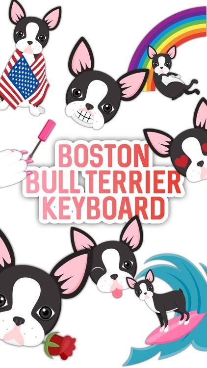 Boston Bull Terrier Keyboard