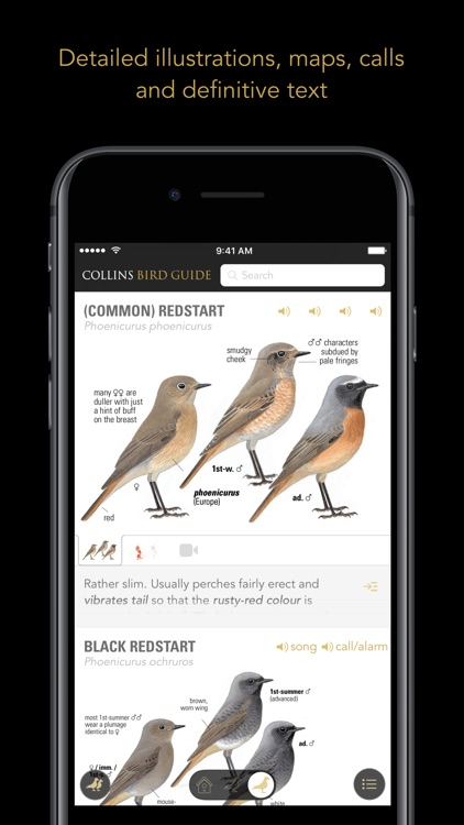 Collins British Bird Guide screenshot-3
