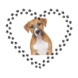 Animated Dog Lovers Sticker Pack