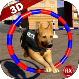 Police Dog Training Stunts