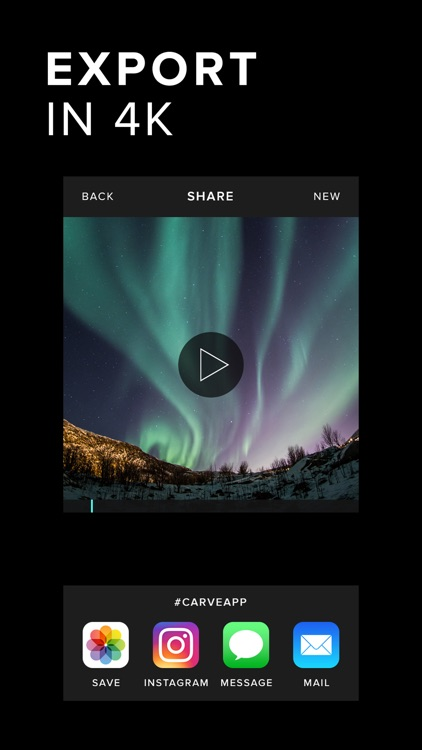 Carve Video Editor - Cinematic Filters screenshot-4