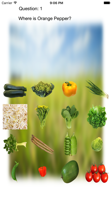 Vegetables Touch ~ simple trivia game ~ screenshot 1
