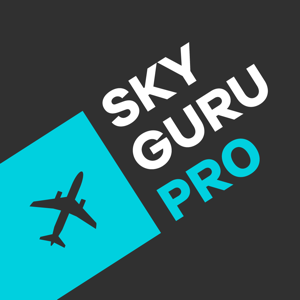 SkyGuru Pro. In-flight support and explanations. app
