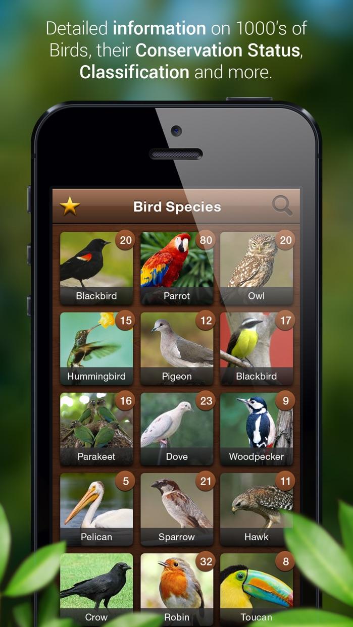 Bird Calls : Bird Sounds, Bird Songs & Bird Guide Screenshot
