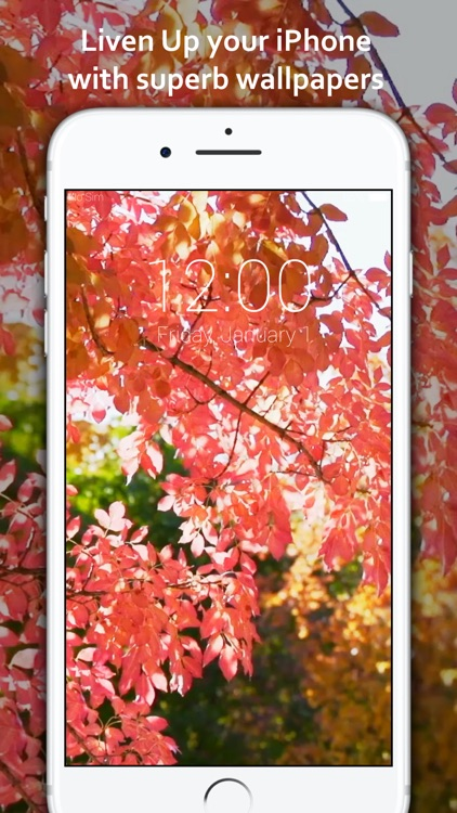 Live Wallpapers Pro: Lock screen themes for iPhone screenshot-4