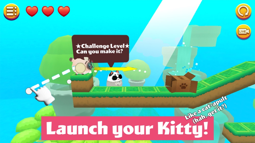 Kitty in the Box 2 Cheat Codes