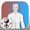 Qi Energy Circulatory System Video Lesson
