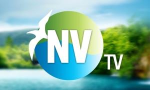 NatureVisionTV