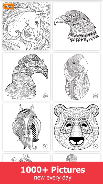 Adult Coloring Book Pages for Adults and Kids