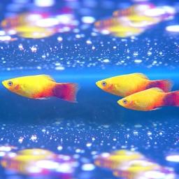 Aquarium Photo Frame - Beautiful Frame Maker