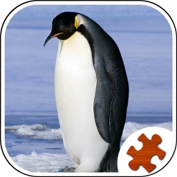 My Penguin Jigsaw Puzzle - Jigsaw Puzzle For Kids