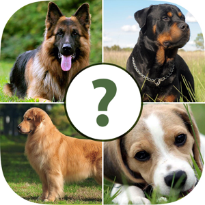 Pups Pet Trivia – The Dog Lovers Quiz Pro app