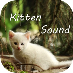 kitten sounds cat meow sound on the app store