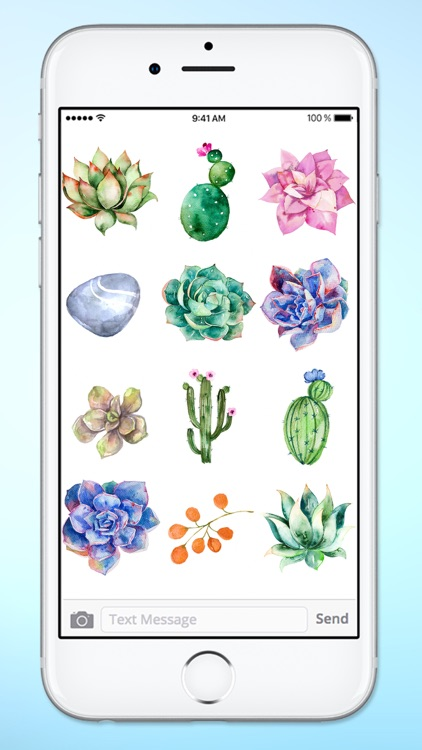 Watercolor Cactus and Succulents Sticker Pack