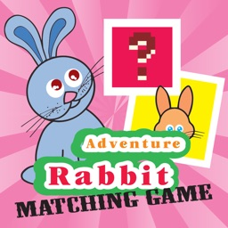 Bunnies Looney Matching Match Games For Kids