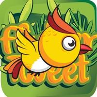 Codes for Flutter Tweet Hack